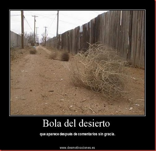 bola_desierto