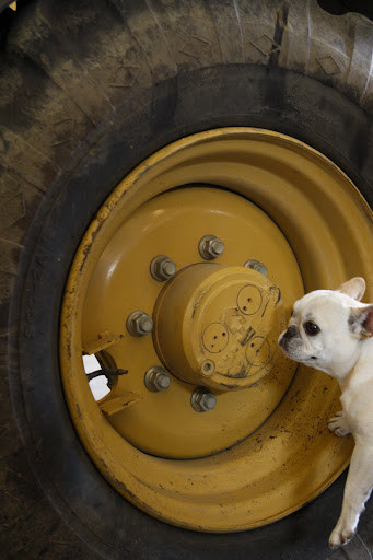 Steve, looks like these lug nuts need a torque adjustment.