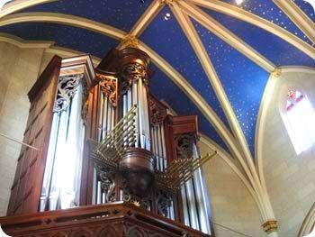 6-organ