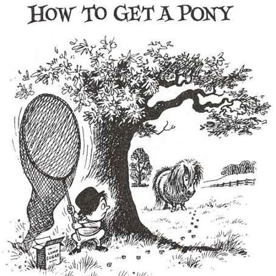 how-to-pony