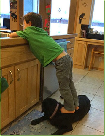0102-sbs-palin-son-on-dog-facebook-4