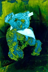 Split-Toned-Prints---Bears-1-D