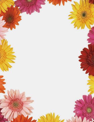 Gerbera daisies flowers spring floral paper stock