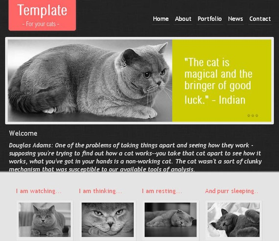 html5css3templates10