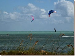 Windsurfers at Curry Hammock