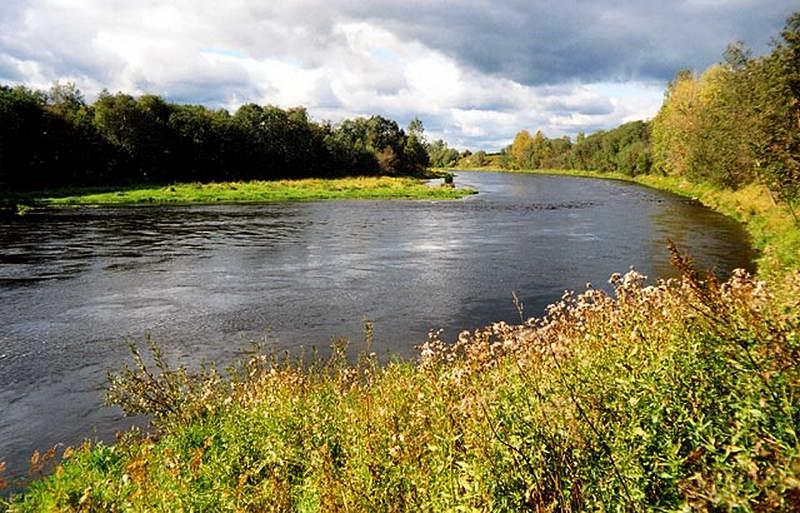 рыбалка на реке вишера в новгородской области