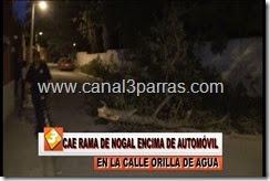 08 IMAG. CAE RAMA DE NOGAL ENCIMA DE AUTOMOVIL EN CALLE ORILLA DE AGUA.mp4_000034200