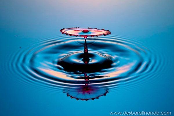 liquid-drop-art-gotas-caindo-foto-velocidade-hora-certa-desbaratinando (21)