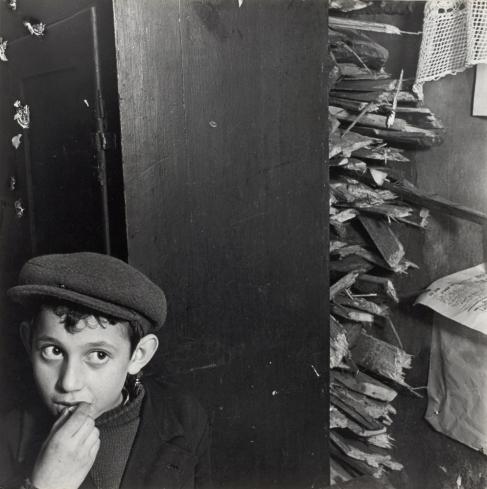 01 1vishniac boy with kindling in basement dwelling