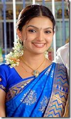 saranya-mohan-in-cute-saree-photo