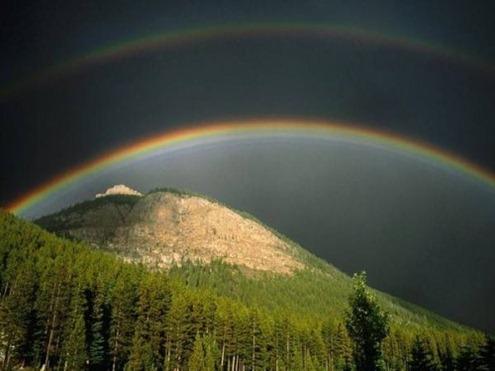 Rainbow-010