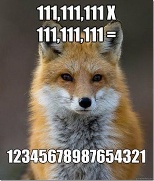 fox-facts-meme-19