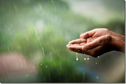 Glifosato-y-Atrazina-en-lluvia
