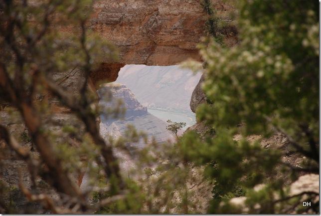 05-17-13 B Grand Canyon North Rim Drive (152)