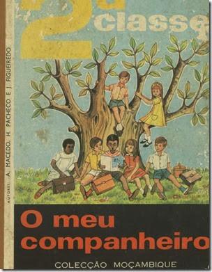 livros_escolar_africa_2