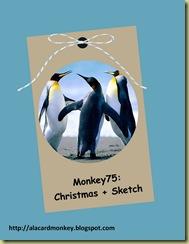 Monkey75 Christmas-001 (1)