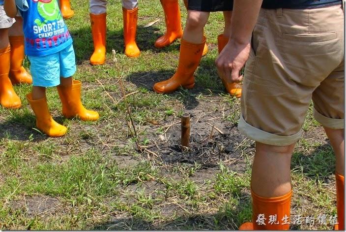 南投頭社活盆地。真的可以整根4~5公尺的竹竿都沒入土地中耶!