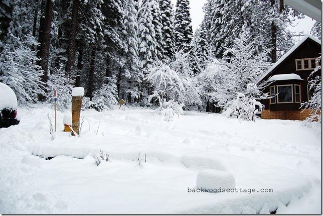 snowySunday4
