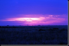 October 18 2012 Serengeti Sunset
