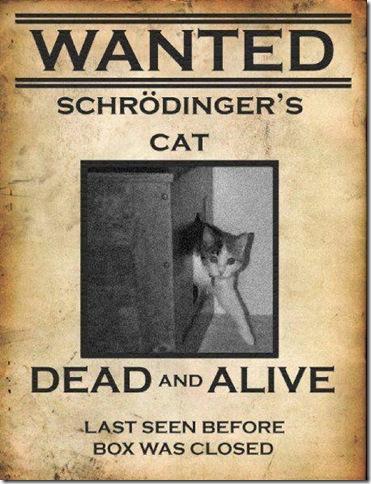WantedSchrodingersCat