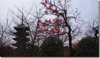 螢幕快照 2013-01-17 下午10.33.57