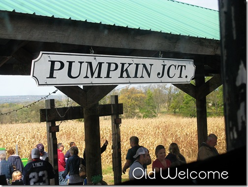 pumpkin junction