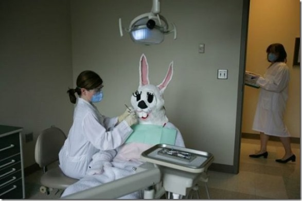 easter-awkward-bunny-7