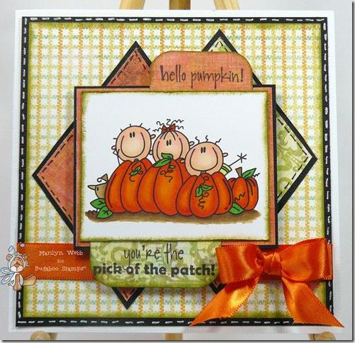 AKV Pumpkin Trio