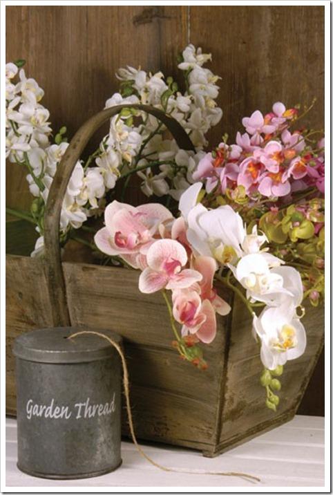 flores 6