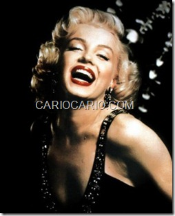 Marilyn Monroe (15)