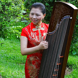GuZeng & Beauty 1 by Alan Chew - People Musicians & Entertainers