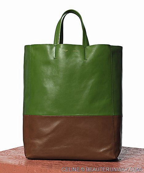 Celine Cabas Bicolor Bag in Green and Brown