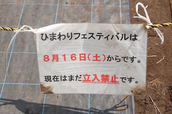 DSCF6646.JPG