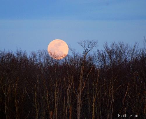2. Moonrise3-7-12 530-kab