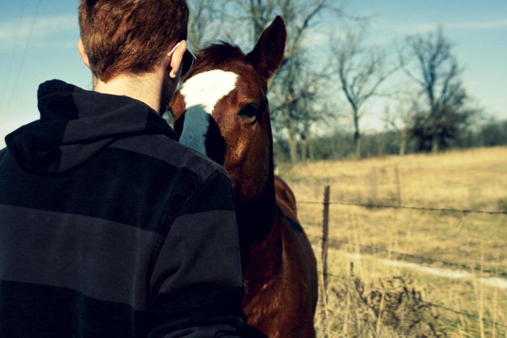 [horse%2520talk%255B3%255D.jpg]