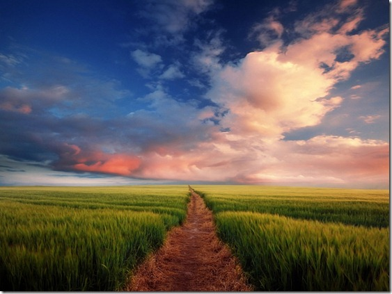 jalan iman