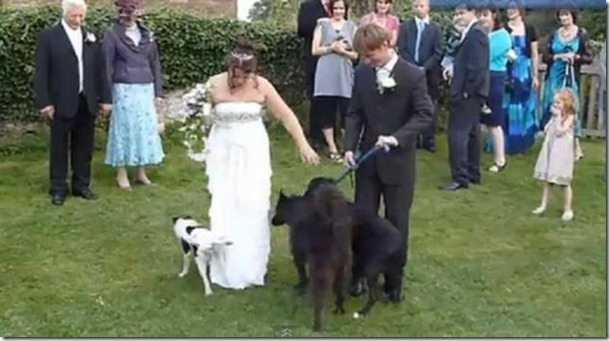crazy-wedding-moments-21