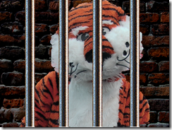 JailAubie
