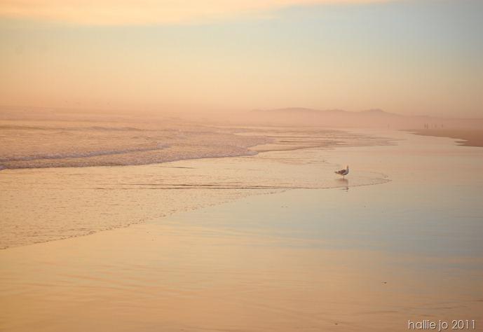 beach35