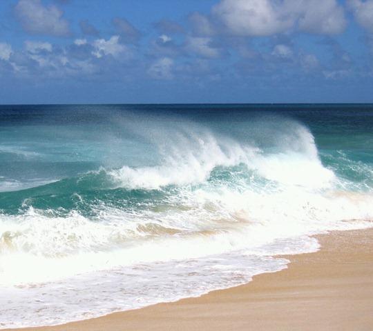 Oahu Beach_33580403
