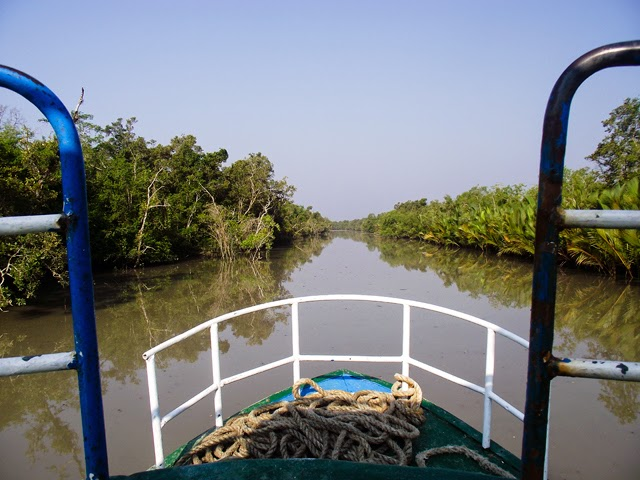 A panoramic view of a small canal inside Sundarbans from our boat
