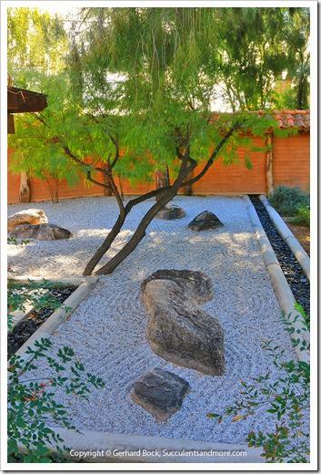 131203_TucsonBotanicalGarden_020