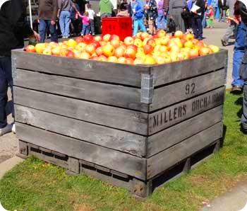 1a-apple-cart