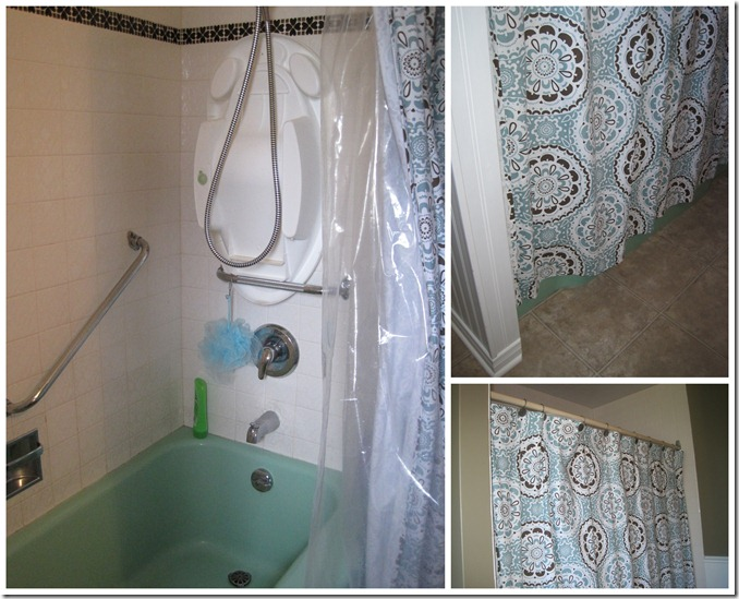 Bathroom Reno5