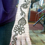 Hennadone at Salisbury University By Hennadesigner 3-11-2011 10-28-25 AM.jpg