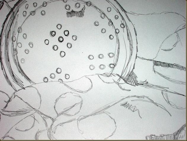 100 drawings drawing one detail three_picnik