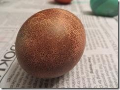 egg day 05