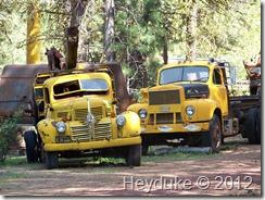 Logging Museum and Crater Lake 012