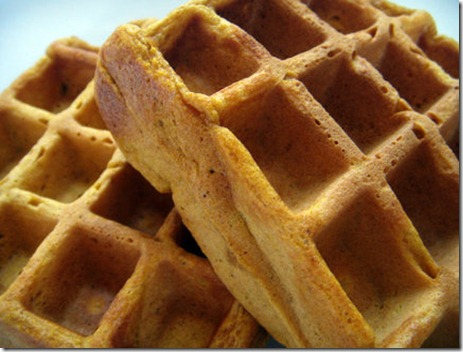 pumpkin-waffle.standalone.prod_affiliate.76[1]