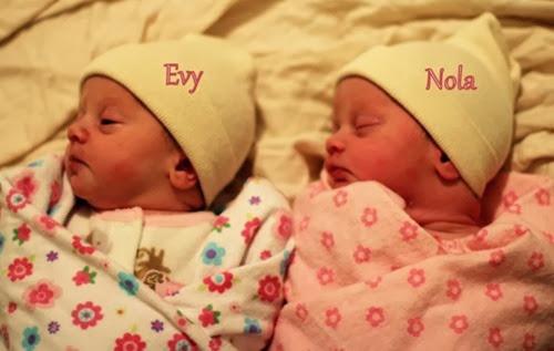 twins newborn pic